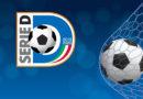 Serie D, le prime promosse nei professionisti: Palermo in C. Le ultime 4 in Eccellenza